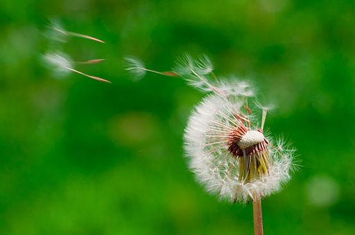 Hat tipp, hogy könnyebb legyen az élet